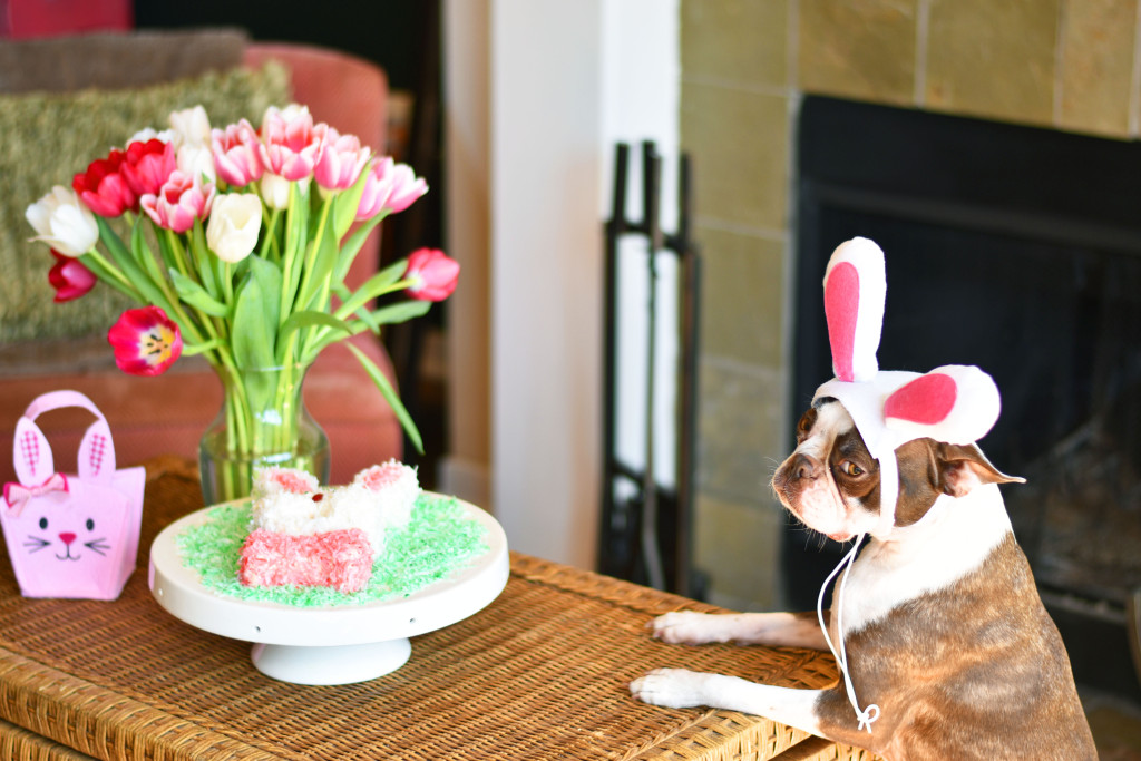 easter recipe, easter bunny recipe, kid friendly easter recipe, easter bunny cake, easter bunny cake recipe, food blogger, dallas food blogger, dallas lifestyle blogger, best dallas blogger, best dallas food blogger, best dallas lifestyle blogger