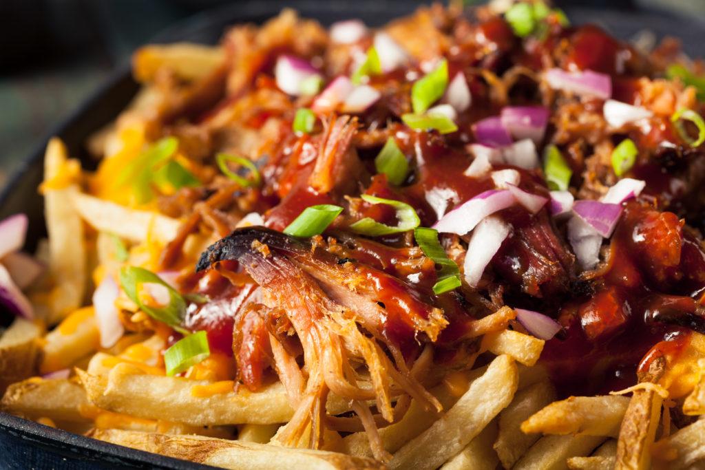 loaded carnitas fries